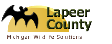 Lapeer County, MI Wildlife Control