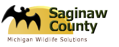 Saginaw County Mi Wildlife Control Michigan Wildlife